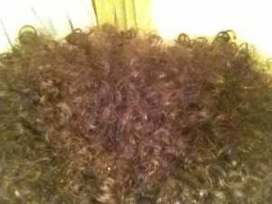 Close up, a better view of my curls with a cream styler